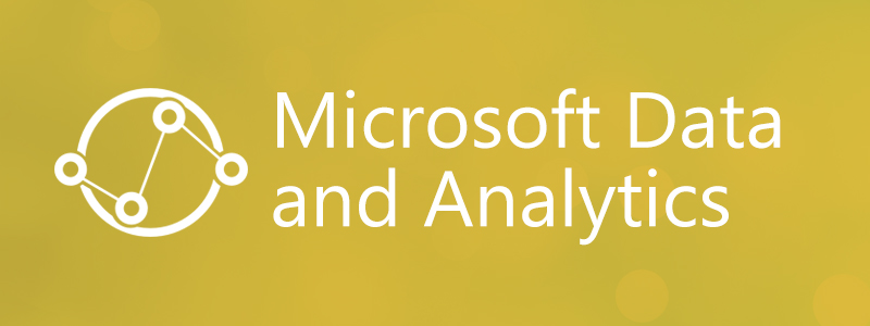 Microsoft Data and Analytics Services